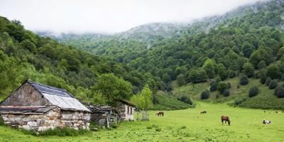 Asturias Brañagallones