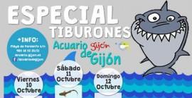especial tiburones